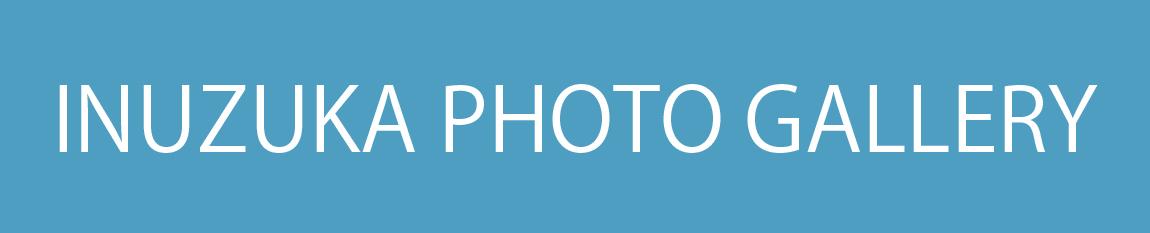 画像に alt 属性が指定されていません。ファイル名: tagu.jpg